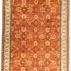 "New Afghan Transitional 11'11""×17'2"""